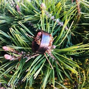 Jewelry - Handcrafted bentwood ring- Fumed Etimoe